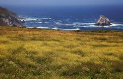 Costa costa de California, Big Sur Foto de archivo