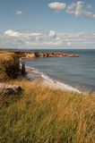 Costa costa de Clifftop Fotografía de archivo libre de regalías