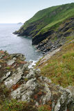 Costa costa de Cornualles Fotografía de archivo libre de regalías