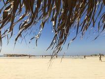 Costa costa de Crete - Elafonisi Imagen de archivo