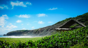 Costa costa de la isla de Mustique Fotografía de archivo libre de regalías
