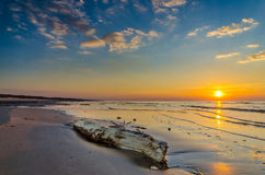 Costa costa de la puesta del sol del mar Báltico cerca de Riga Fotos de archivo libres de regalías