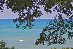 Costa costa de Michigan a través del árbol foto de archivo libre de regalías