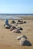 Costa costa del desierto Fotos de archivo libres de regalías