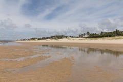 Costa costa del sur - natal, RN, el Brasil Foto de archivo libre de regalías
