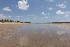 Costa costa del sur - natal, RN, el Brasil Fotos de archivo libres de regalías
