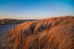 Costa costa, Dinamarca Imagen de archivo libre de regalías