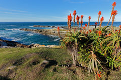 Costa costa escénica - Suráfrica Fotos de archivo