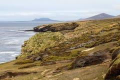 Costa costa Falkland Islands Foto de archivo libre de regalías