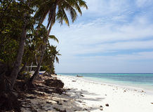 Costa costa hermosa, opinión de la turquesa del mar con las palmeras, Imágenes de archivo libres de regalías