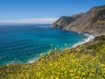 Costa costa a lo largo de la carretera 1, Big Sur Fotografía de archivo libre de regalías