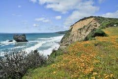 Costa costa pacífica cerca de la roca del arco/rastro del valle del oso en el punto Reyes National Seashore Foto de archivo libre de regalías