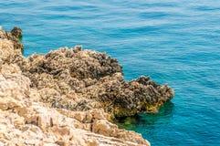 Costa costa rocosa con el mar adriático azul cristalino Imagen de archivo libre de regalías