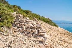 Costa costa rocosa con los arbustos y árboles y efecto negativo del medicamento cristalino del azul Imágenes de archivo libres de regalías