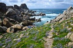 Costa costa rocosa en Cerdeña, Italia Imagen de archivo libre de regalías