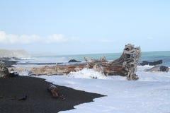 Costa costa rugosa de Nueva Zelanda Imagen de archivo libre de regalías