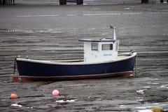 Costa da égua de Weatern na maré baixa fotos de stock
