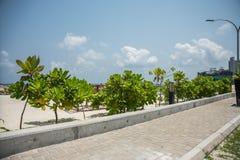 A costa da cidade do homem maldives férias Areia branca Fotografia de Stock Royalty Free
