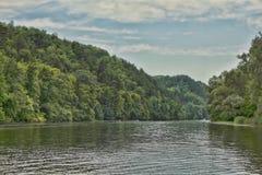 Costa da floresta perto do Seversky Donets Fotografia de Stock