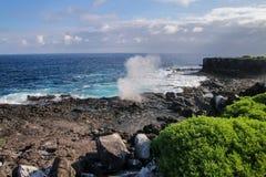 Costa da ilha com bolhas, parque nacional de Espanola de Galápagos fotografia de stock royalty free