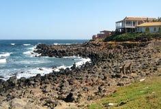 Costa da ilha de N'gor Imagem de Stock