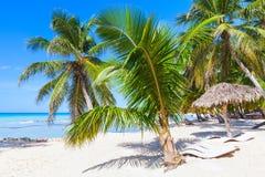 Costa da ilha de Saona, recurso turístico Foto de Stock Royalty Free