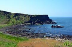 A costa da Irlanda com verão do mar e dos penhascos ajardina Foto de Stock Royalty Free