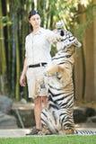 Costa da luz do sol, Queensland, Austrália - 17 de setembro de 2014: Grande tigre de Bengal no jardim zoológico de Austrália dent Imagens de Stock Royalty Free
