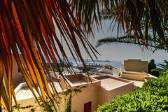 Costa da palma com construções dos hotéis Imagens de Stock Royalty Free