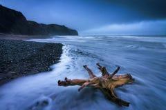 Costa da tempestade Imagem de Stock Royalty Free