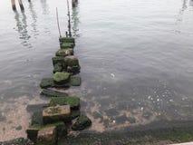 Costa das rochas Imagem de Stock