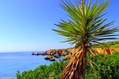 Costa de Algarve Fotografía de archivo