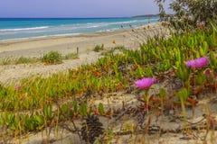 Costa de Apulia: Playa de Alimini, ITALIA Lecce Imagen de archivo