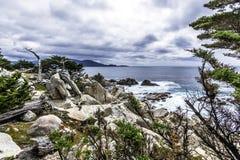 Costa de Big Sur/punto de Pescadero en la impulsión de 17 millas Fotografía de archivo