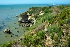 Costa de Cali Fotografia de Stock