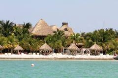 Costa de Caraibian Imagen de archivo libre de regalías