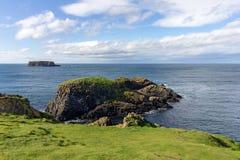 Costa de Causway em Irlanda do Norte fotos de stock royalty free