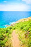 Costa de Cornualha em St Ives, Inglaterra fotografia de stock