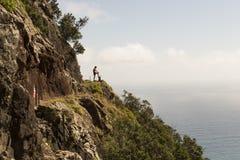 Costa de la isla de Madeira Foto de archivo libre de regalías