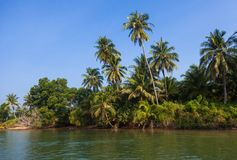 Costa de la isla de Similan cerca de Phuket en Tailandia Imagen de archivo