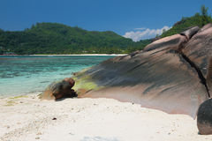 Costa de la isla tropical Baie Lazare, Mahe, Seychelles Foto de archivo libre de regalías