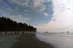 Costa costa de la playa en el parque nacional olímpico, la península olímpica cerca de Seattle imagenes de archivo