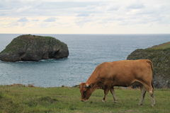 Costa de Llanes, Asturies, Espagne Photographie stock