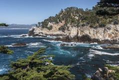 Costa de Lobos del punto Fotos de archivo
