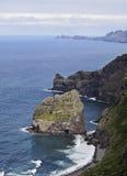 Costa de Madeira Fotografia de Stock