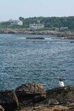 Costa de Maine fotografía de archivo
