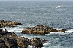 Costa de Maine Fotos de archivo