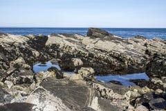 Costa de Maine Imagens de Stock Royalty Free