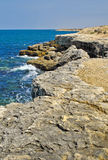 Costa de mar Imagem de Stock
