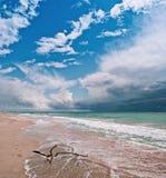 A costa de mar Imagem de Stock Royalty Free
